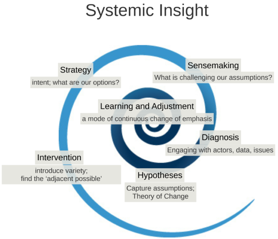 systemic insight overview